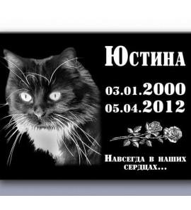 Памятник для кота ts0126