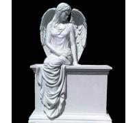 Памятник эксклюзивный с ангелом ts0280