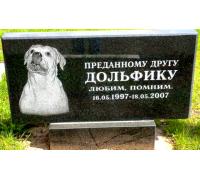Памятник для собаки ts0051